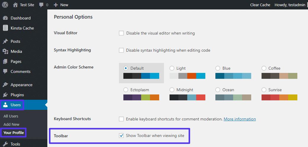 painel de controle administrativo (wp-admin) WordPress