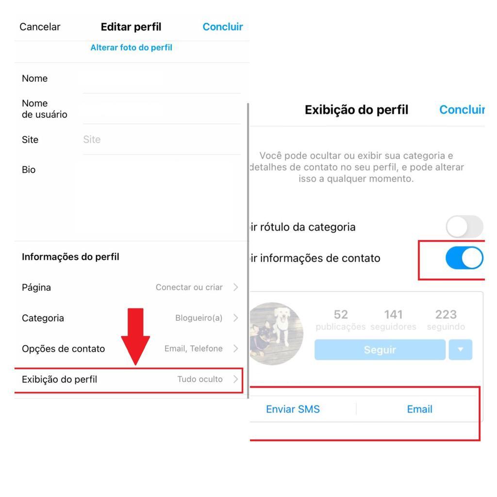 Link Do Whatsap No Instagram